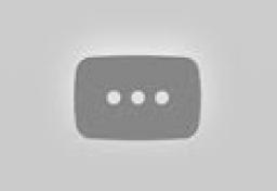 O projeto de reflorestamento da Peugeot no Brasil