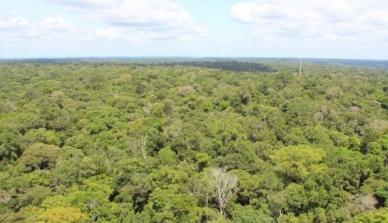 Brasil representa mais de 50% da redução global de emissões de carbono em 15 anos