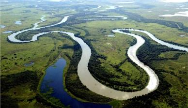 IBGE divulga pesquisa que aponta desmatamento de 15% do Pantanal