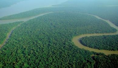 Predição de carbono na Amazônia brasileira