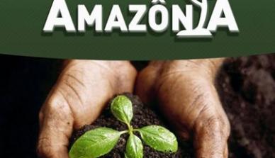 Projeto do Ministério Público de Mato Grosso recebeu mudas da ONF Brasil para mutirão de reflorestamento afirmativo