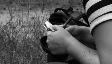 A ONF Brasil abre vagas de estágio na Fazenda São Nicolau