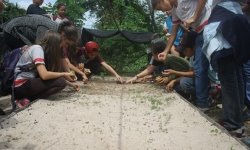 O Macaco-barrigudo, o jacaré, o jabuti e outros animais encantaram as crianças durante o Programa de Educação Ambiental na Fazenda São Nicolau