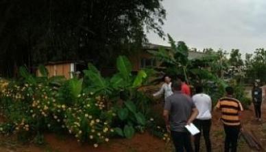 A ONF Brasil organiza em parceria com a SEMA-MT diálogos para promover a educação ambiental na construção de sociedades sustentáveis