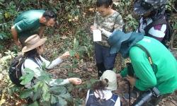 Mestrandos e doutores da UFMT participam de curso de ecologia de campo na Fazenda São Nicolau e se deparam com a diversidade de animais observados