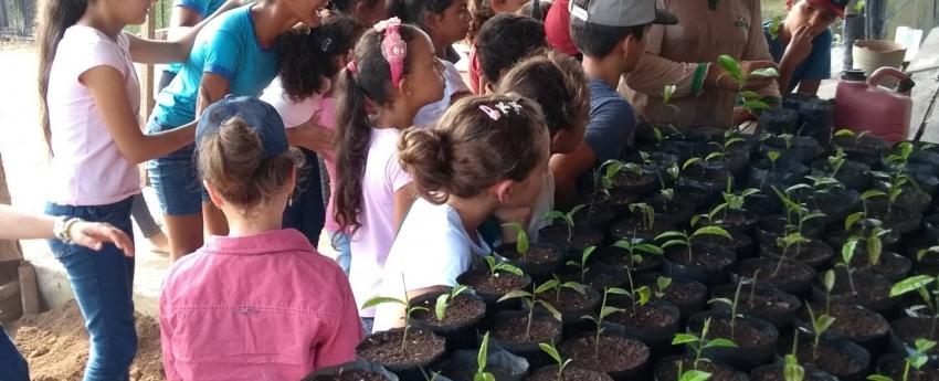 O essencial é invisível aos olhos, lembram os facilitadores das atividades do Programa de Educação Ambiental da ONF Brasil