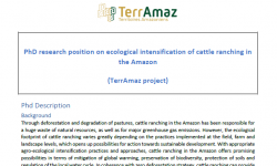 Projeto TerrAmaz abre vaga para tese de doutorado sobre Intensificação Ecológica da Pecuária na Amazônia até dia 25 de agosto