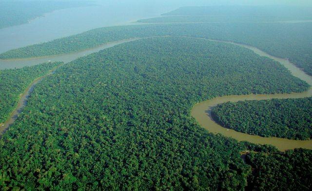 predicao-de-carbono-na-amazonia-brasileira