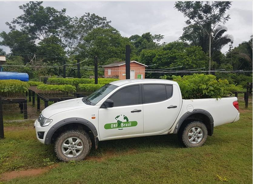 A equipe da ONF Brasil trabalha pela restauração de áreas degradadas da Fazenda São Nicolau (Foto: Acervo da ONF Brasil)