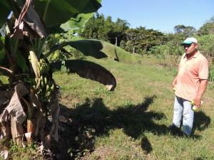 Alimentação na Fazenda São Nicolau (2)