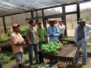 Oficina da ONF Brasil estimula os cafeicultores do Noroeste de Mato Grosso a adotarem práticas agroecológicas 13
