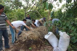 Oficina da ONF Brasil estimula os cafeicultores do Noroeste de Mato Grosso a adotarem práticas agroecológicas 3