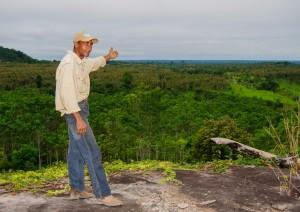 Gilberto e uma visão ampla das plantações - 2008.