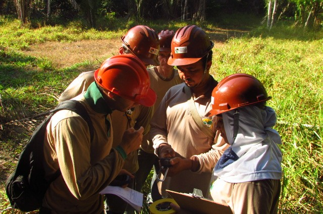 Demarcação participativa das árvores (Foto: ICV)
