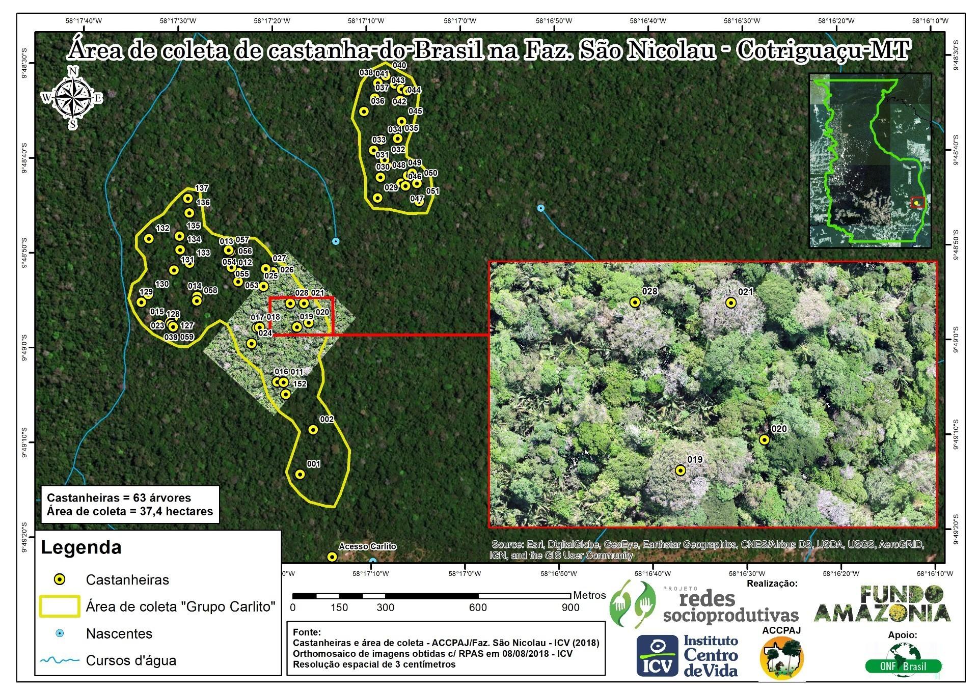 Mapas das áreas de coleta de castanhas na Fazenda São Nicolau (Imagem: ICV)