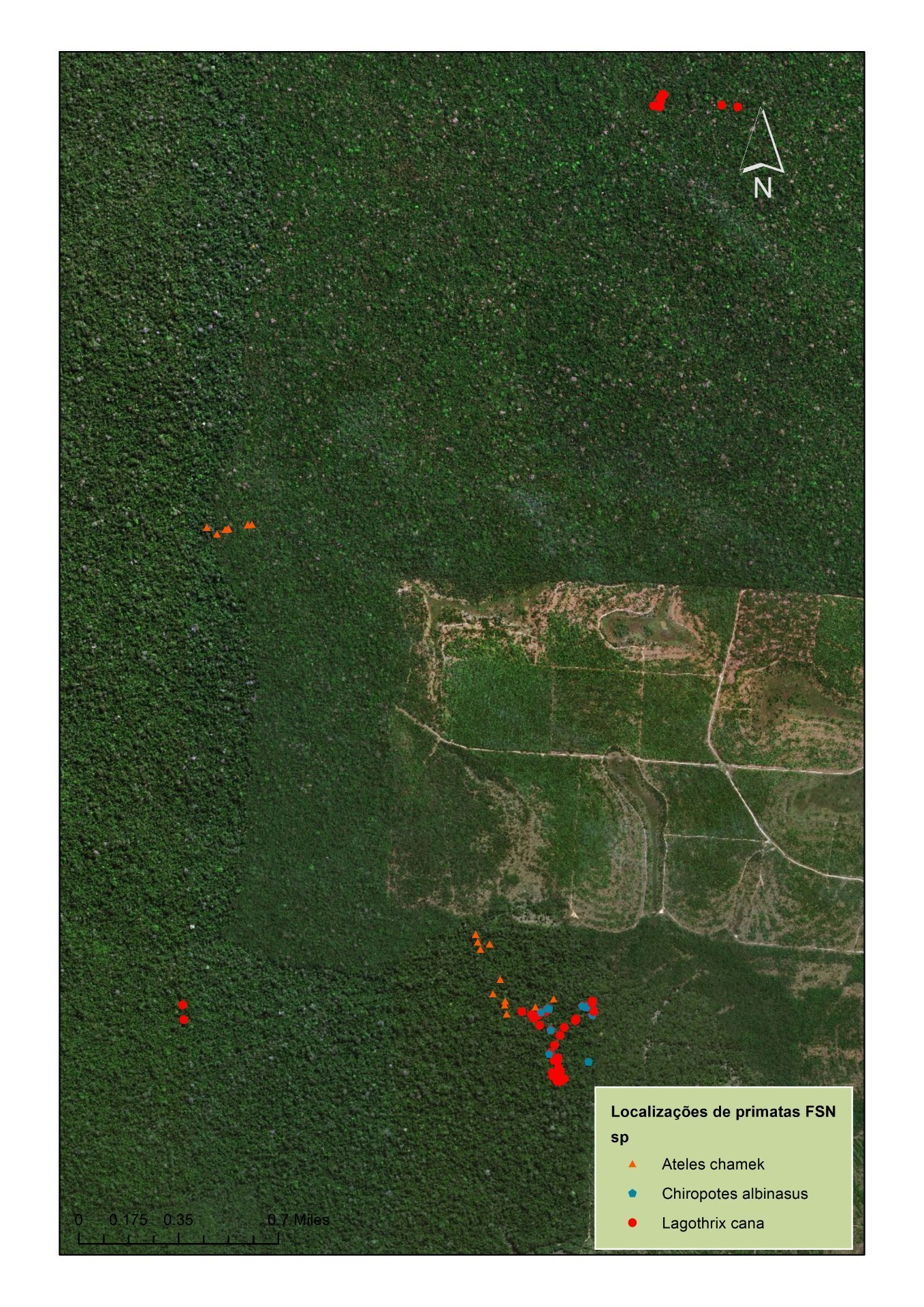 Mapa da localização dos macacos (Imagem: Raíssa Alves)