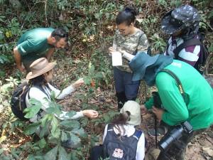 Os professores Lucas e Frederico apoiam os estudantes no trabalho de campo (Foto: Acervo ONF Brasil)