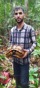 Antonio com uma jabuti (Chelonoidis denticulata), tartaruga frequentemente encontrada na floresta durante os inventários (Acervo ONF Brasil)