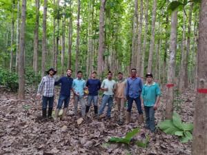 ONF Brasil inventaria estocagem de carbono nas árvores do PCFPO (Acervo ONF Brasil)